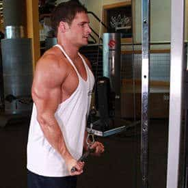 triceps-pressdown-2