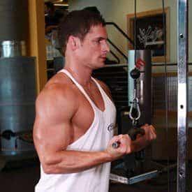 triceps-pressdown